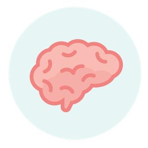 SWV de Eem brein hoogbegaafd